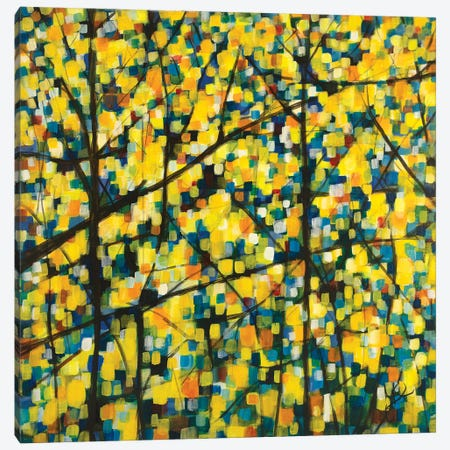 Brighter Morning Canvas Print #YFS145} by Yolanda Fernandez-Shebeko Canvas Print
