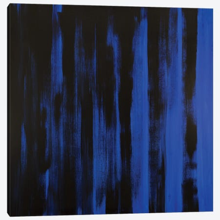 Nightfall Canvas Print #YFS150} by Yolanda Fernandez-Shebeko Canvas Print