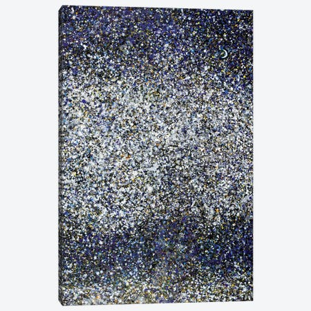 Midnight Snow and Stars  Canvas Print #YFS42} by Yolanda Fernandez-Shebeko Art Print