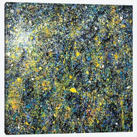 Night Lights  Canvas Print #YFS45} by Yolanda Fernandez-Shebeko Canvas Artwork