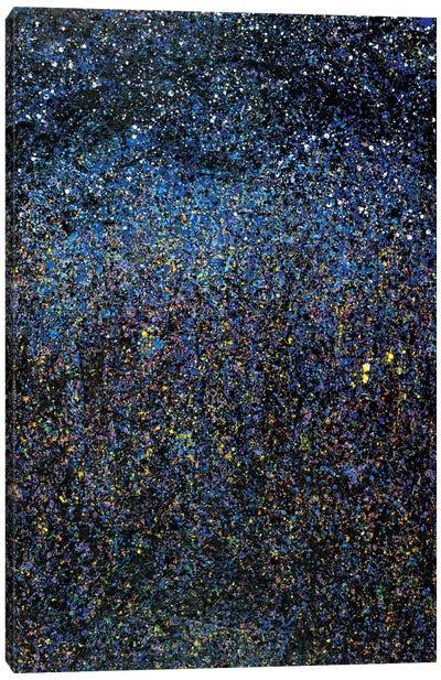 Night Time Landscape  Canvas Art Print