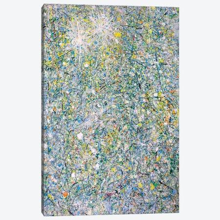 Winter Sun Stars  Canvas Print #YFS56} by Yolanda Fernandez-Shebeko Canvas Art Print