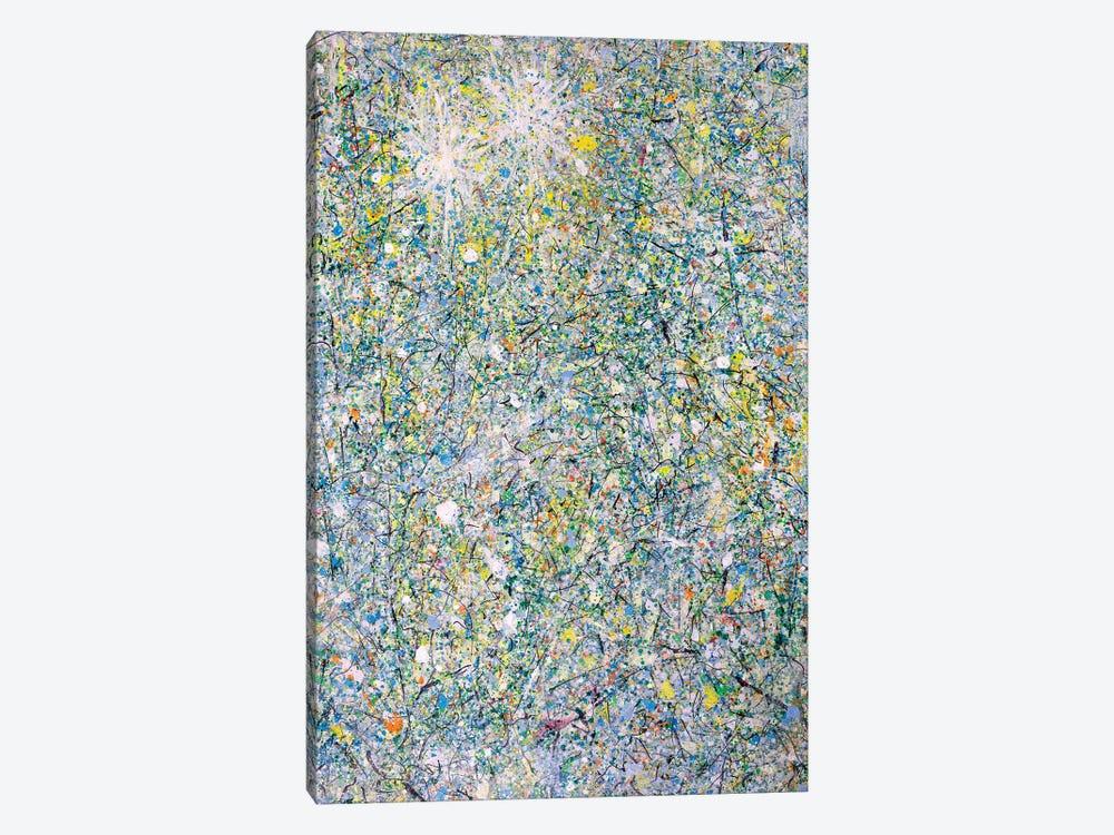 Winter Sun Stars  by Yolanda Fernandez-Shebeko 1-piece Canvas Artwork