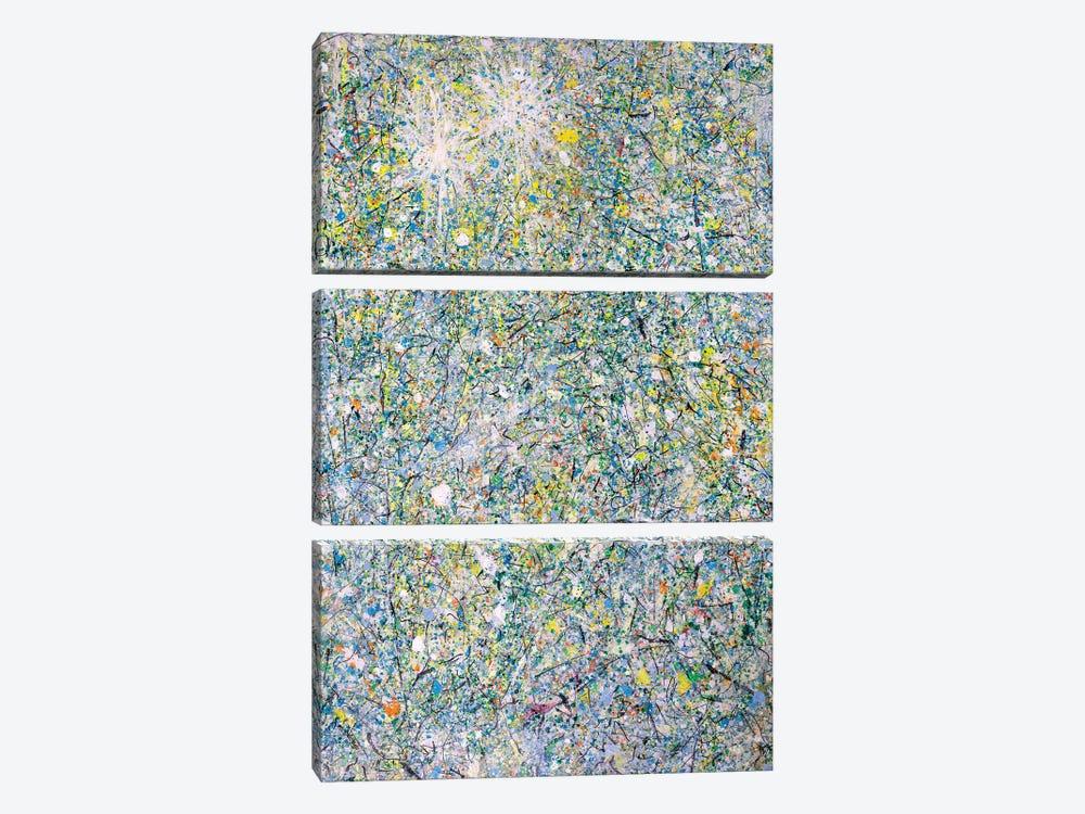 Winter Sun Stars  by Yolanda Fernandez-Shebeko 3-piece Canvas Wall Art