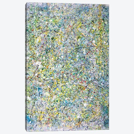 Winter Writings  Canvas Print #YFS57} by Yolanda Fernandez-Shebeko Art Print