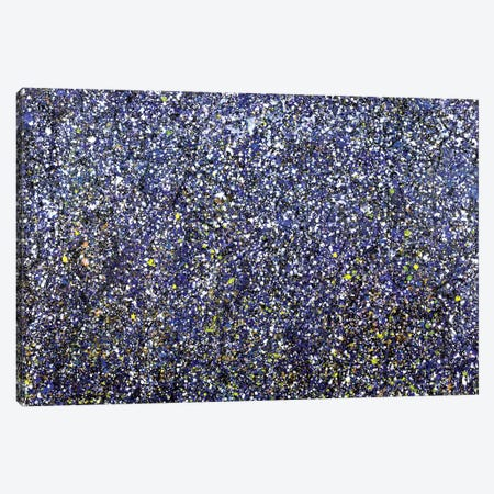 Winter Woods  Canvas Print #YFS69} by Yolanda Fernandez-Shebeko Art Print