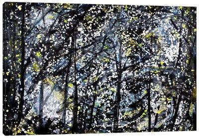 Evening Drive Canvas Art Print