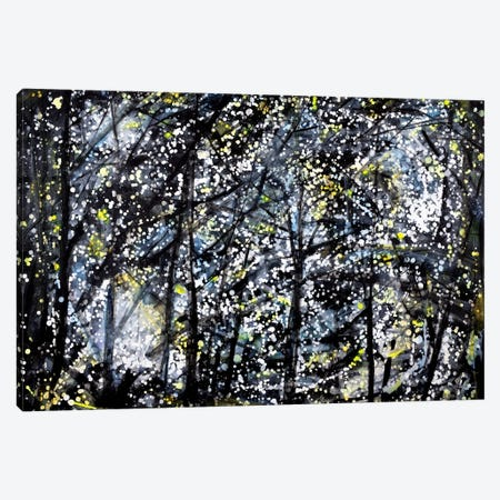 Evening Drive Canvas Print #YFS8} by Yolanda Fernandez-Shebeko Canvas Wall Art