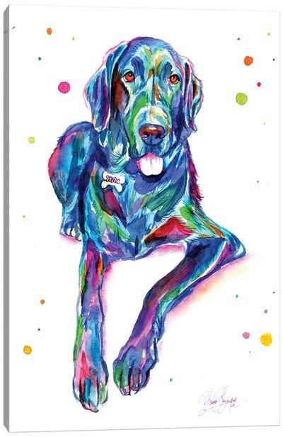 Colorful Great Dane Canvas Art Print