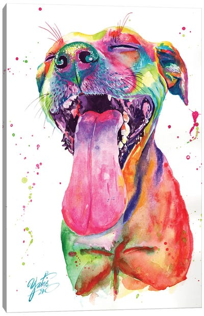 Colorful Pitbull II Canvas Art Print