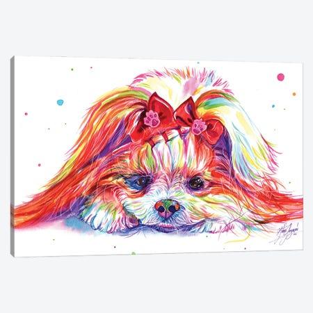 Cute Dog Canvas Print #YGM21} by Yubis Guzman Canvas Wall Art