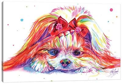 Cute Dog Canvas Art Print