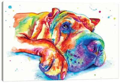 Dog Rest Canvas Art Print