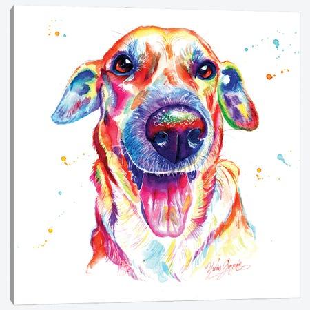 Happy Dog Canvas Print #YGM24} by Yubis Guzman Canvas Art Print