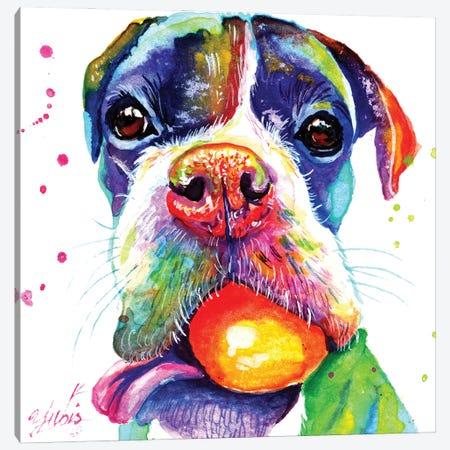 Playful Puppy Canvas Print #YGM28} by Yubis Guzman Canvas Artwork