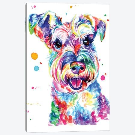 Smiling Schnauzer Canvas Print #YGM29} by Yubis Guzman Canvas Art