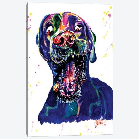 The Catching Dog Canvas Print #YGM30} by Yubis Guzman Canvas Print