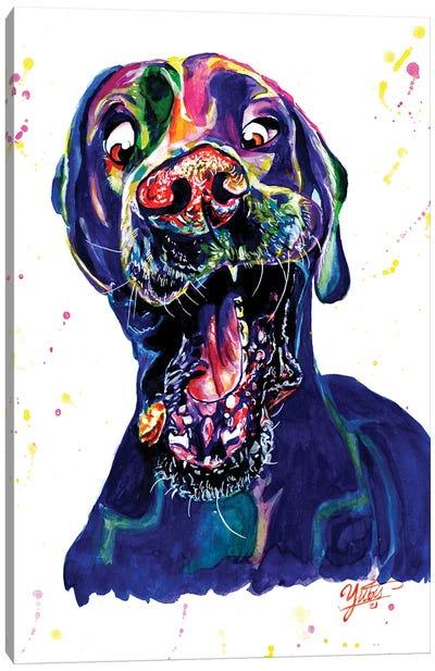 The Catching Dog Canvas Art Print