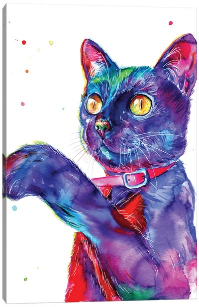 Blue Cat Canvas Art Print