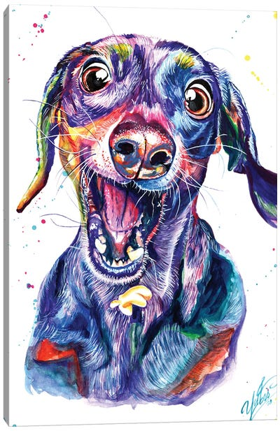 Catching Dog Canvas Art Print