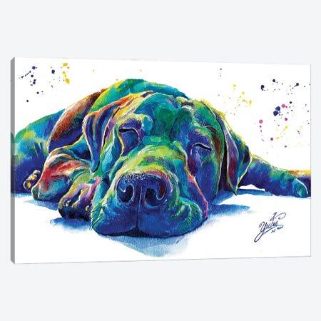 Blue Dog I Canvas Print #YGM3} by Yubis Guzman Canvas Art
