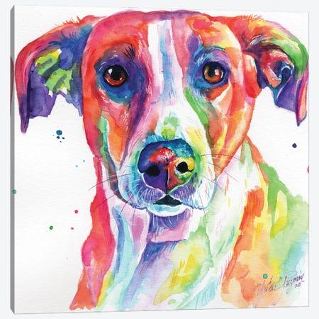 Colorful Dog Canvas Print #YGM40} by Yubis Guzman Canvas Artwork