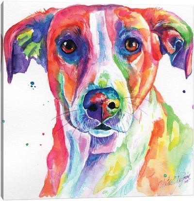 Colorful Dog Canvas Art Print