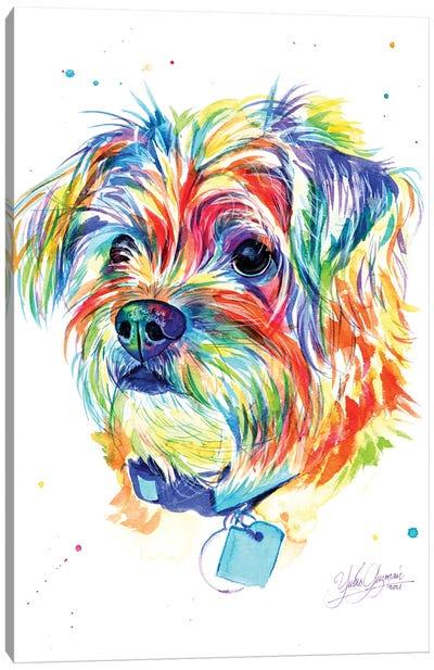 Little Colorful Puppy Canvas Art Print