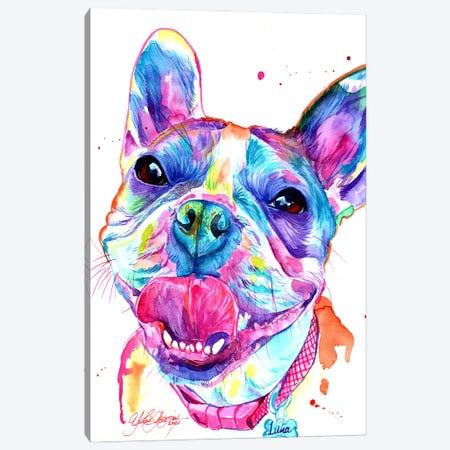 French Bulldog Canvas Print #YGM46} by Yubis Guzman Canvas Print
