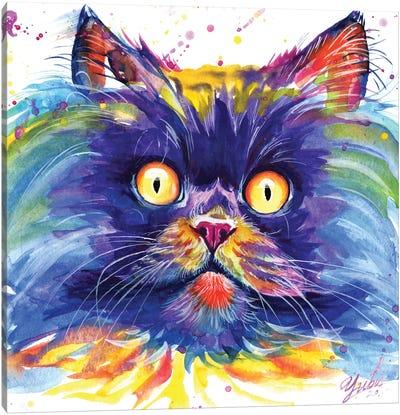Sun Eyes Cat Canvas Art Print