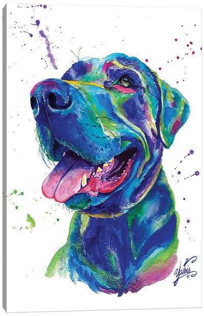 Blue Dog II Canvas Art Print