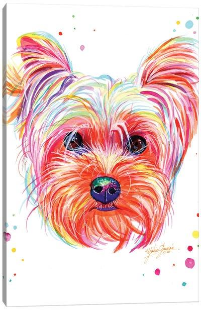 Yorkie Puppy Canvas Art Print