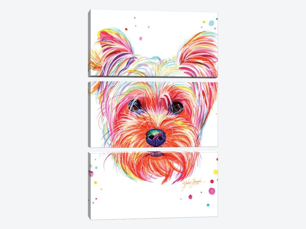 Yorkie Puppy by Yubis Guzman 3-piece Canvas Artwork