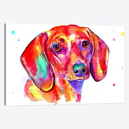 Dachshund Canvas Print #YGM51} by Yubis Guzman Canvas Print