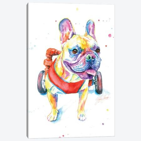 Fighting Dog Canvas Print #YGM57} by Yubis Guzman Canvas Artwork