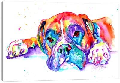 Colorful Boxer Canvas Art Print