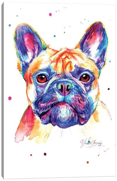 Colorful Bulldog Frances Canvas Art Print