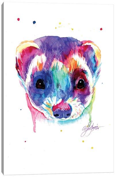 Colorful Ferret Canvas Art Print
