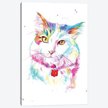 Lovely Yellow-Eyed Cat Canvas Print #YGM71} by Yubis Guzman Canvas Print