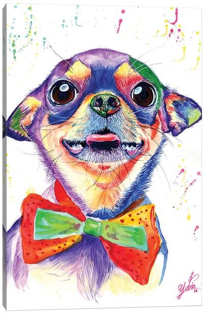 Colorful Chihuahua Canvas Art Print