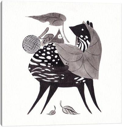 Chevrotain Canvas Art Print