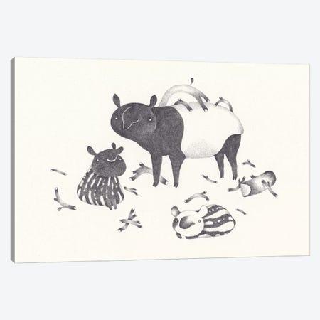 Tapir Canvas Print #YOS35} by Yohan Sacre Art Print