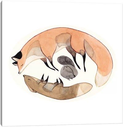 Apesanteur Canvas Art Print