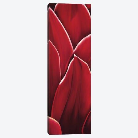 Dahlia II Canvas Print #YPH10} by Yvonne Poelstra-Holzhaus Canvas Art