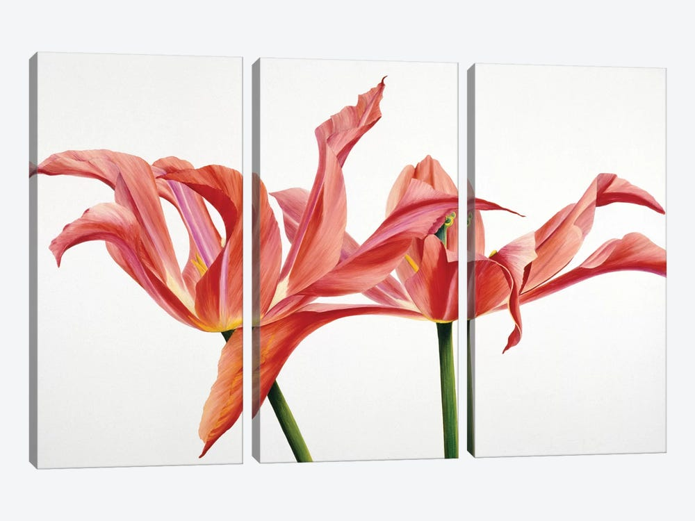 Dancing Floriade by Yvonne Poelstra-Holzhaus 3-piece Canvas Art Print