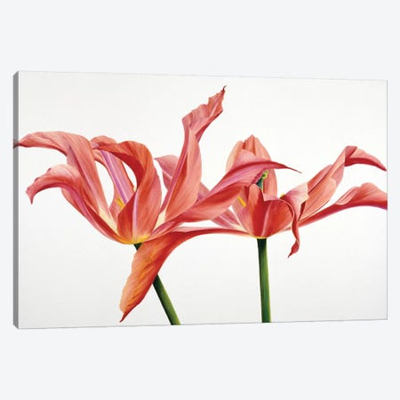 Dancing Floriade Canvas Print #YPH11} by Yvonne Poelstra-Holzhaus Canvas Artwork