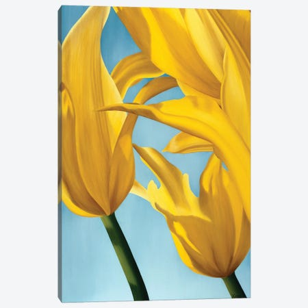 Dancing Yellow Canvas Print #YPH12} by Yvonne Poelstra-Holzhaus Canvas Artwork