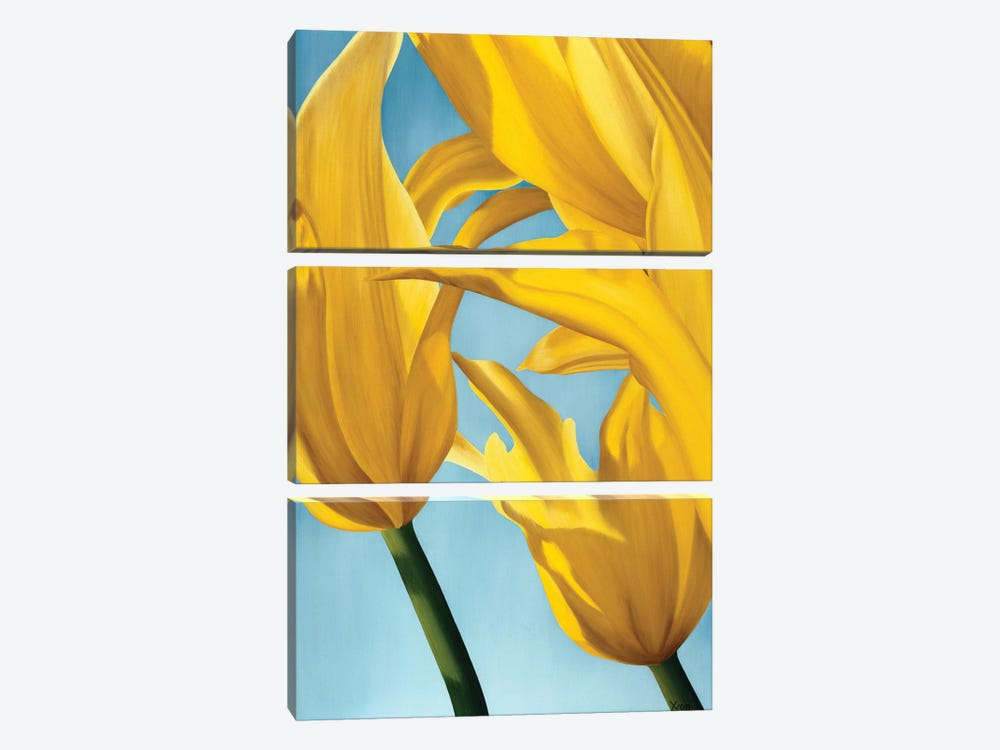 Dancing Yellow by Yvonne Poelstra-Holzhaus 3-piece Canvas Art