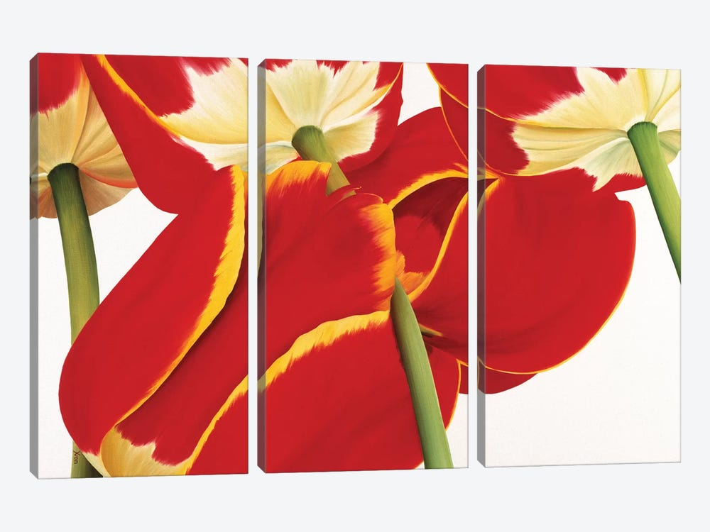 Dutch II by Yvonne Poelstra-Holzhaus 3-piece Art Print