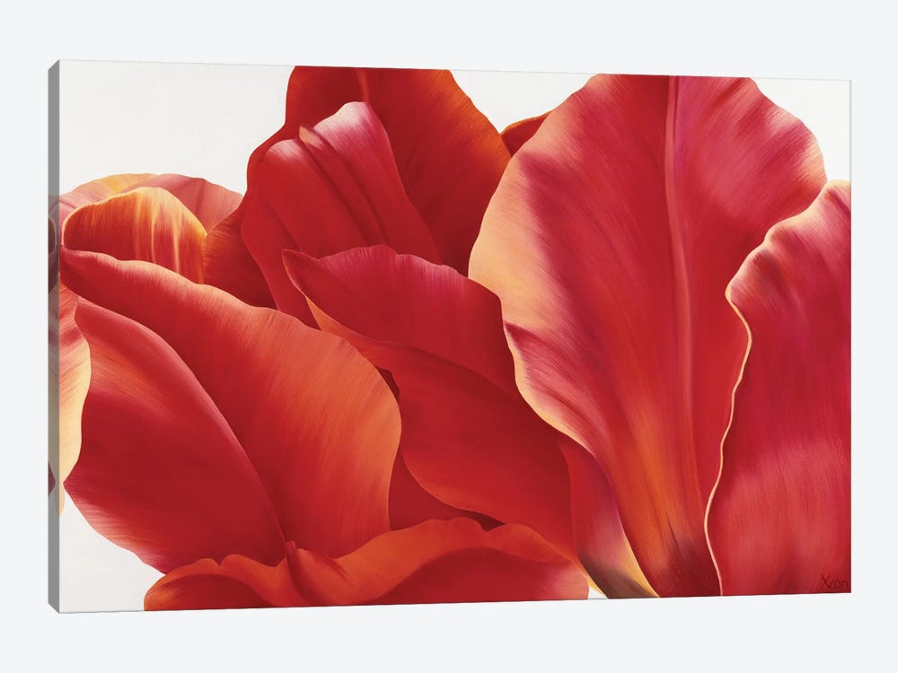 Fancy Flower I by Yvonne Poelstra-Holzhaus 1-piece Canvas Wall Art